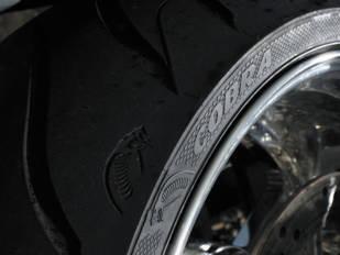 Avon Tyres amplía su gama Cobra de neumáticos cruiser