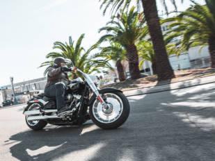 Harley-Davidson Fat Boy: Fortachona